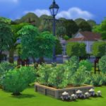 Sims 4 Gardening Mod With Specific Seed Packets Garden Sets Download