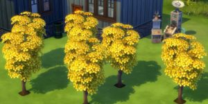 Sims 4 Money Tree
