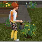 Sims 4 Fertilizer
